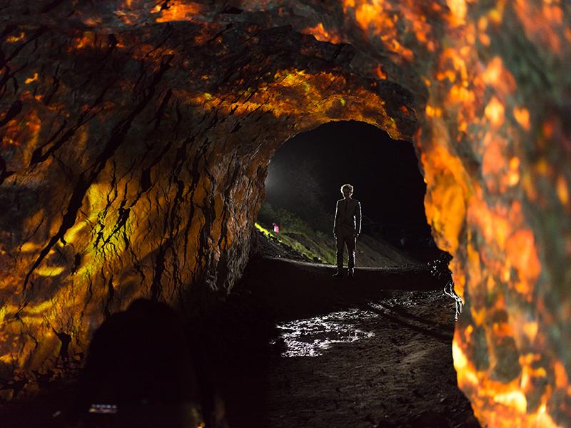 National Geographic x Zedd